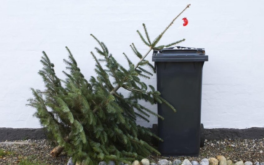 Éves hulladéknaptár és fenyőfák elszállítása