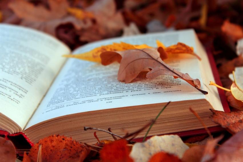 Őszi Könyvtári Napok