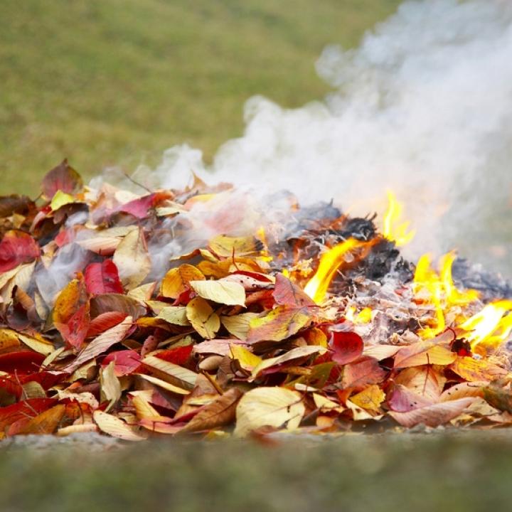 Tájékoztató avar és kerti hulladék égetési szabályairól
